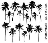 collection of vector palm... | Shutterstock .eps vector #1331457236
