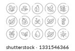 plants line icons. leaf ... | Shutterstock .eps vector #1331546366