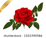 beautiful bouquet with red... | Shutterstock .eps vector #1331590586