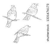 vector line drawing birds... | Shutterstock .eps vector #1331676173