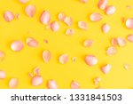 rose petals on yellow background | Shutterstock . vector #1331841503