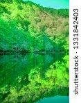 scenery of beautiful green... | Shutterstock . vector #1331842403