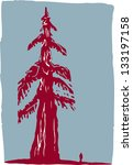 branch,drawing,forest,illustration,national,nature,park,redwood,solitude,tree,trunk,vector,west