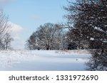 tree during the winter season   Shutterstock . vector #1331972690