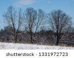 tree during the winter season   Shutterstock . vector #1331972723