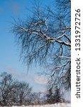 tree during the winter season   Shutterstock . vector #1331972726