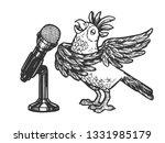 cartoon singing parrot with...   Shutterstock . vector #1331985179