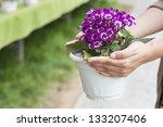 hand holding up spring daisy... | Shutterstock . vector #133207406