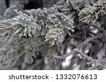 fir branches in hoarfrost. snow ... | Shutterstock . vector #1332076613
