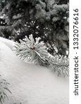 fir branches in hoarfrost. snow ... | Shutterstock . vector #1332076616