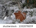 tree branches in the snow.... | Shutterstock . vector #1332078359