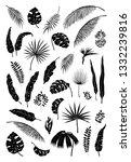 silhouette palm leaves. black...   Shutterstock .eps vector #1332239816