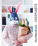 young adult bunny rabbit...   Shutterstock . vector #1332416873