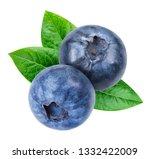 blueberry isolated on white... | Shutterstock . vector #1332422009
