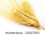 Wheat Ears On  A  White...