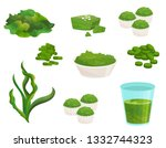flat vector set of spirulina... | Shutterstock .eps vector #1332744323