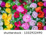 beauty of colorful flowers... | Shutterstock . vector #1332922490