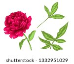 vector red peony floral... | Shutterstock .eps vector #1332951029