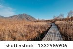 A Hiking Trail Wooden Footpath...