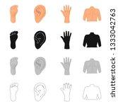 vector design of body and part...   Shutterstock .eps vector #1333042763
