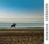 Horse And Rider Galloping Alon...