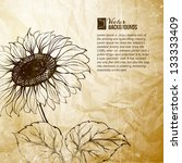 Illustration Of Sunflower....
