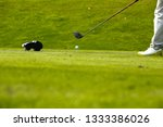 golfer holding club and... | Shutterstock . vector #1333386026