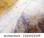 autumn fall leaves on white...   Shutterstock . vector #1333423109