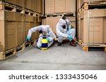 industrial pest control | Shutterstock . vector #1333435046