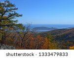 beauty of nature in the... | Shutterstock . vector #1333479833