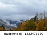 beauty of nature in the... | Shutterstock . vector #1333479860