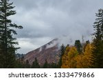 beauty of nature in the... | Shutterstock . vector #1333479866