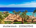 sunny resort beach with palm... | Shutterstock . vector #1333619543