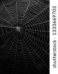 spider web in the darks.  | Shutterstock . vector #1333669703