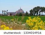 view from flowers summer meadow ...   Shutterstock . vector #1334014916