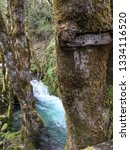 nature reclaims paradise creek... | Shutterstock . vector #1334116520