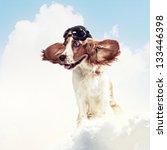 a dog wearing a helmet pilot.... | Shutterstock . vector #133446398