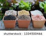chemical fertilizers  main... | Shutterstock . vector #1334500466