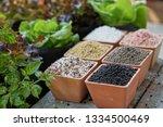chemical fertilizers  main... | Shutterstock . vector #1334500469