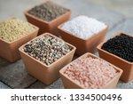 chemical fertilizers  main... | Shutterstock . vector #1334500496
