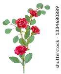 bouquet of carnation schabaud ...   Shutterstock .eps vector #1334680889