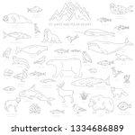 ice sheet and polar desert... | Shutterstock .eps vector #1334686889
