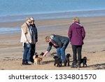 instow  north devon  england ...   Shutterstock . vector #1334801570
