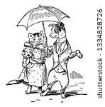 Dog   Cat Dressed With Umbrella ...