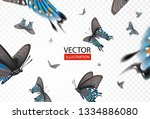 vector illustration butterflies ... | Shutterstock .eps vector #1334886080