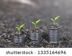 trees growing on coins . plant... | Shutterstock . vector #1335164696