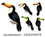 toucan 3d realistic vector mesh ...   Shutterstock .eps vector #1335194579