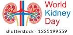 world kidney day design | Shutterstock .eps vector #1335199559
