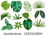 collection various of green... | Shutterstock . vector #1335214850