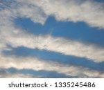 flock of wild geese flying... | Shutterstock . vector #1335245486